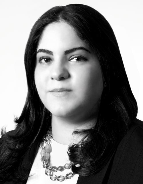 samae rohani matrimonial attorney westchester NY